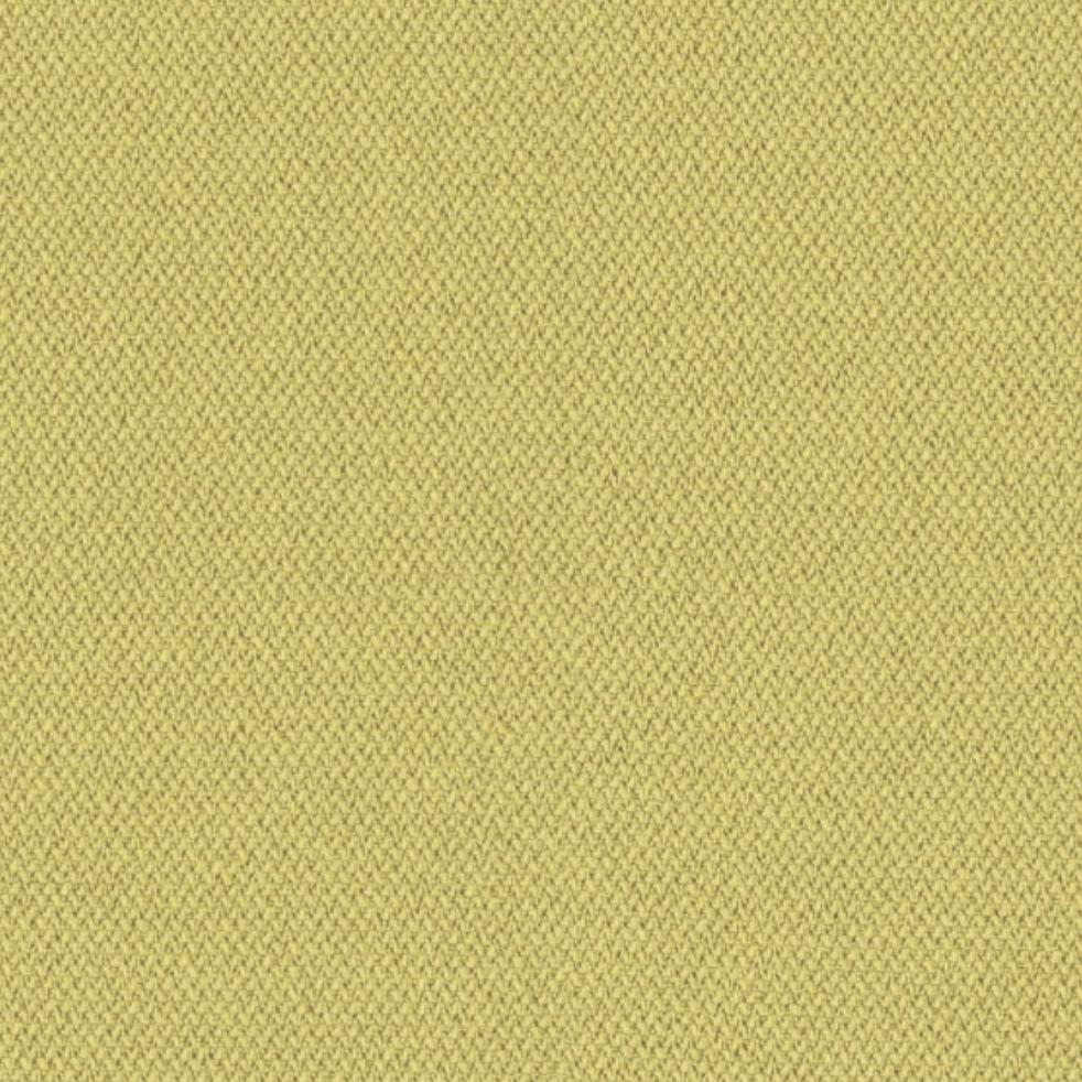 CSE03-Kanarienvogel