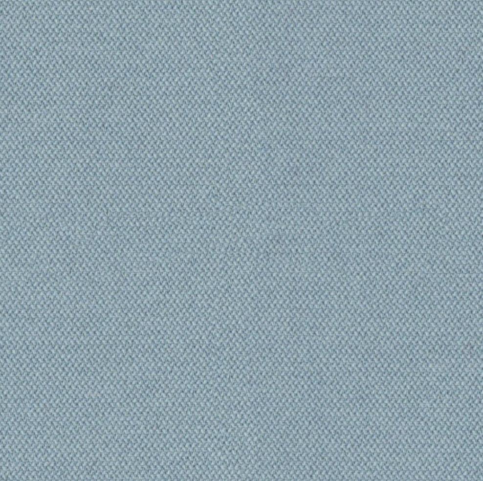 CSE20-Blaue-Minze